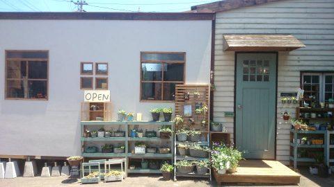 多肉と雑貨のお店okamoku